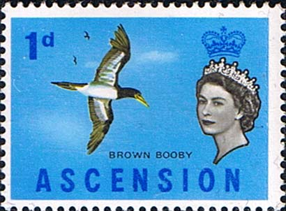 Postage Stamps Ascension 1963 Queen Elizabeth II Birds SG 70 Bird Fine Mint