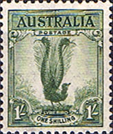 Stamps of Australia 1937 LyreBird SG 174 Fine Mint Scott 175a