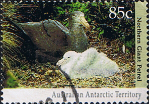 Stamps Australian Antarctic Territory 1992 Wildlife Hall's giant petrel Northern giant petrel on nest with fledgeling Fine Used SG 92 Scott L85