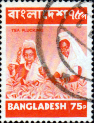 Bangladesh 1973 Tea Picking SG 30 Fine Used
