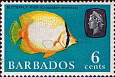 Stamp of Barbados 1965 QE II SG 327w Marine Life Spot-finned Butterflyfish Fine Mint with inverted watermark