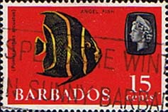 Postage stamps if Barbados 1966 QE II SG 350 Grey Angelfish Fine Used