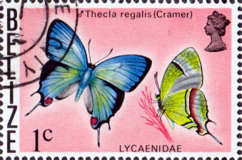 Postage Stamps Belize 1974 Butterflies Fine Mint SG 394 Scott 359