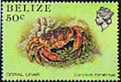 Belize 1984 Marine Life from Coral Reef SG 775a Fine Mint
