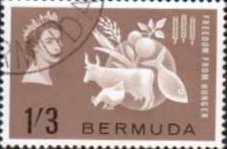 Bermuda Freedom From Hunger Stamps Fine Mint