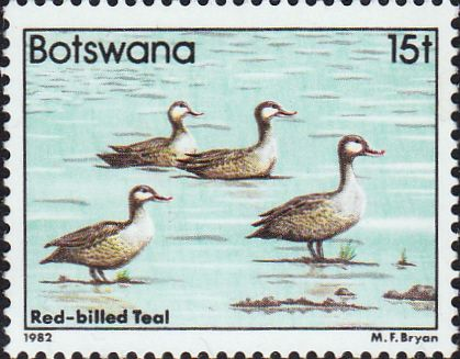Botswana 1982 Birds Red-billed pintail  SG 524 Fine Mint