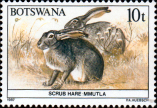 Botswana 1987 Animals SG 626 Fine Mint