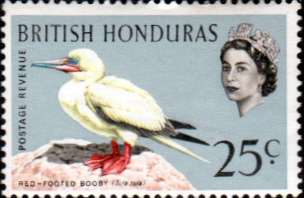 British Honduras 1962 Birds SG 209 Fine Mint