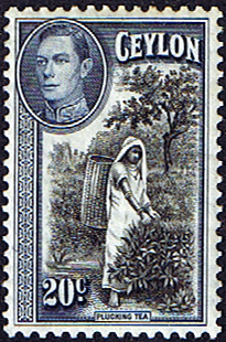Ceylon 1938 King George VI SG 391 Tea Picking Fine Mint