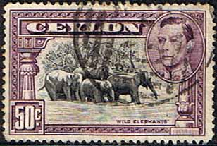 Ceylon Stamps 1938 King George VI SG 394c Wild Elephants Fine Used Scott 286a