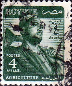 Egypt 1953 Agriculture SG 417 Fine Used