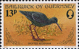 Singapore Pictures 1978 on 1978 Birds Sg 172 Spotted Redshank Fine Mint Guernsey 1978 1978