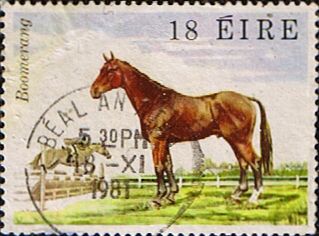 Stamps Stamp Eire Ireland 1981 Famous Irish Horses SG 501 Fine Used Scott 506