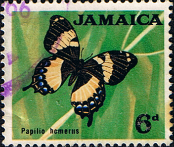 Jamaica 1964 SG 223 Butterfly Fine Used