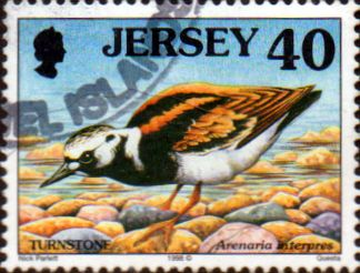 Jersey 1997 Birds SG 797 Fine Used