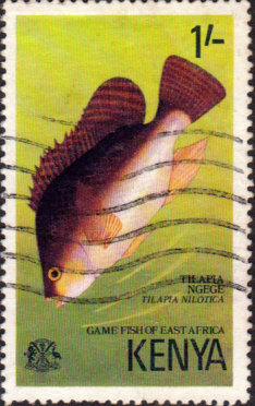 Postage Stamps Kenya 1977 Game Fish of East Africa Nile mouthbrooder  SG 72 Fine Used Scott 69