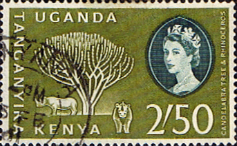 Postage Stamps Kenya Uganda Taganyika 1960 Animals and Plants SG 195 Fine Used Scott 12
