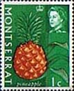 Montserrat 1965 Queen Elizabeth II SG 160 Pineapple Fruit Fine Mint