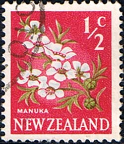 New Zealand 1967 SG 845 Flower Fine Used