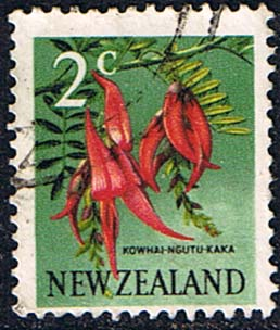 Stamps New Zealand 1967 SG 847 Flower Fine Used Scott 384