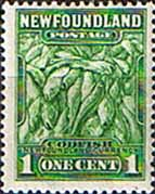 Newfoundland 1932 SG 209 Atlantic Cod Fine Mint