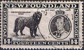Newfoundland 1937 SG 262 King George VI Coronation Newfoundland Dog Fine Used