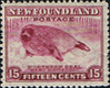 Newfoundland 1941 SG 285 Northern Seal Fine Mint