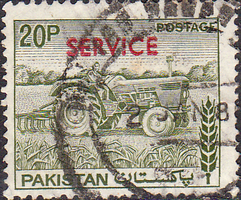 Pakistan 1979 Official SERVICE SG O113 Fine Used
