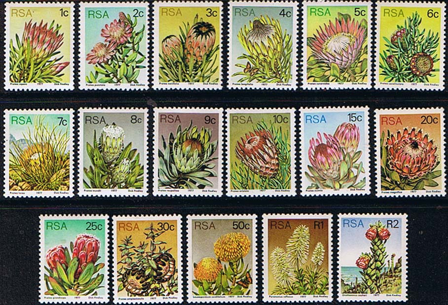 African Stamps South Africa 1977 Proteas And Succulents