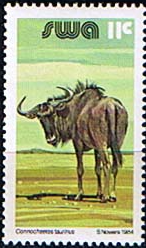 Postage Stamps South West Africa 1980 Wildlife Animals Set Fine Mint
