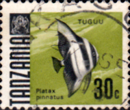 Stamps Tanzania 1967 Fish Fine Used SG 146 Scott 23