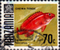 Stamps Tanzania 1967 Fish Fine Used SG 150 Scott 27