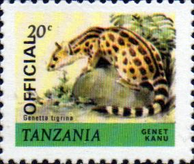 Postage Stamp Tanzania 1980 Wildlife Zebra Fine Used SG 315 Scott 169
