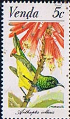 Venda 1981 Sun Birds SG 38 Fine Mint