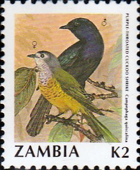 Postage stamps of Zambia 1987 Birds SG 492 Olive-flanked Robin Chat Surcharged Fine Used Scott 389
