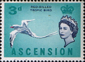 Ascension 1963 Queen Elizabeth II Birds SG 73 Fine Mint