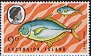 Ascension Island 1970 Fish SG 127 Fine Mint