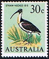 Australia 1966 SG 397 Straw Necked Ibis Bird Fine Mint
