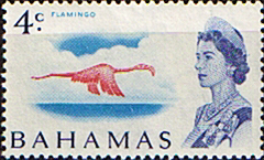 Postage Stamps of Bahamas 1967 Decimal Surcharge SG 298a Flamingo Fine Mint White Paper