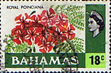 Postage Stamps Bahamas 1971 Royal Poinciana SG 371 Fine Used