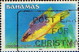 Postage Stamps Bahamas 1986 Fish Spanish Hogfish SG 769A Fine Used