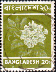 Bangladesh 1973 Hibiscus Flower SG 26 Fine Used
