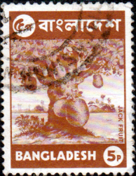 Bangladesh 1973 Jack Fruit SG 24 Fine Used