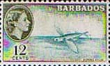 Barbados 1953 QE II SG 296 Flying Fish Fine Mint