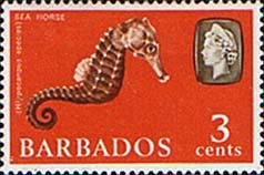 Stamps of Barbados 1965 QE II SG 324 Marine Life Sea Horse Fine Mint