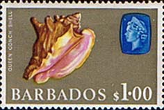 Barbados 1965 QE II SG 334 Marine Life Queen or Pink Conch shell Fine Used