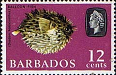Stamps of Barbados 1966 QE II SG 349 Porcupinefish Fine Mint