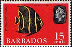 Stamps of Barbados 1966 QE II SG 350 Grey Angelfish Fine Mint