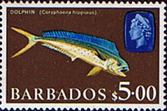 Stamps of Barbados 1966 QE II SG 355a Marine Life Dolphin Fine Mint