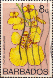 Stamps Barbados 1974 Orchids SG 490 Fine Used Scott 401